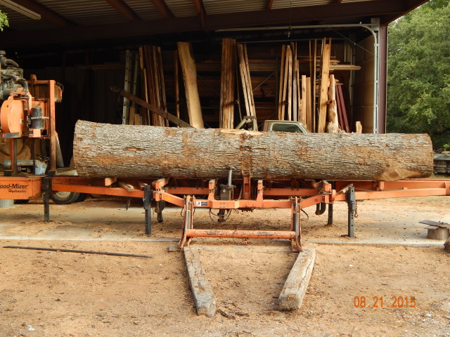 Post Oak Log  0787.JPG
