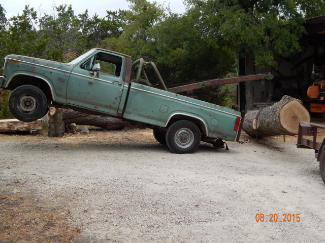 Post Oak Log  0784.JPG