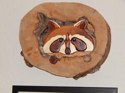 Raccoon in hollow, Theresa T. 0333