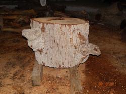 Bur Oak 0878 (Custom)