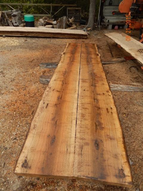 Post Oak Log  0789.JPG