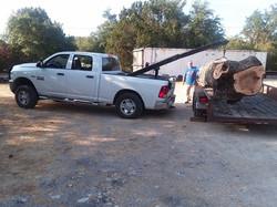pecan, new Dodge_084803