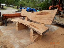 Bench, Live Oak 0690