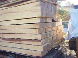 Loblolly+pine+from+Bastrop+fire,4x12,12x12+28.JPG
