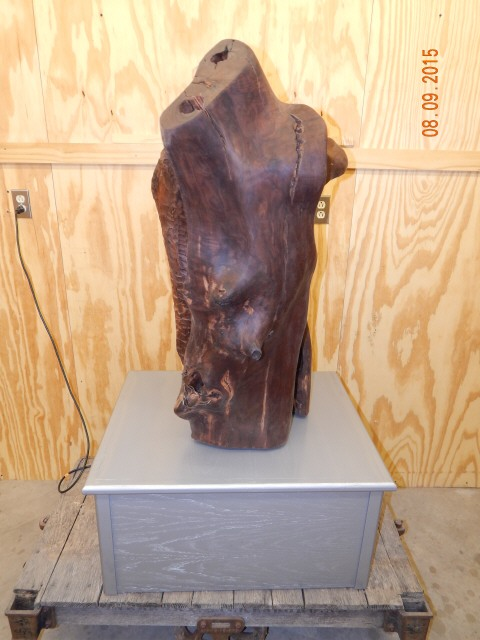 Walnut Natural Scu;lpture 0772.JPG