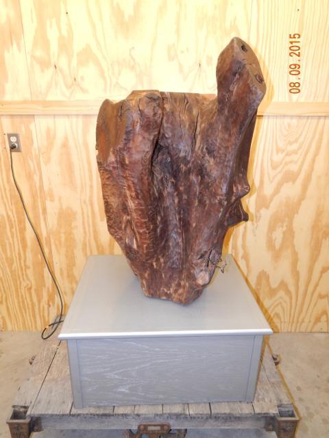 Walnut Natural Scu;lpture 0771.JPG