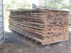 Loblolly+pine+from+Bastrop+fire,+slabs30.JPG