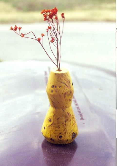 agarita+stem+pot.jpg