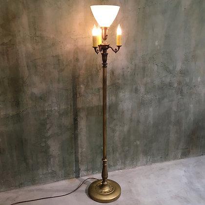 Upshade floor lamp/LF01-12