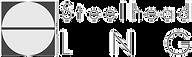 Steelhead Logo 2.png