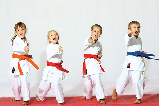 Master Kim's Taekwondo Academy, Martial arts