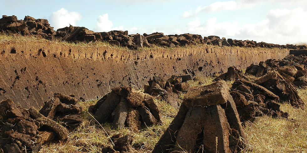 To peat & how to peat