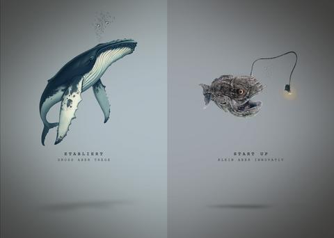 Vergleich_Wal-Laternenfisch