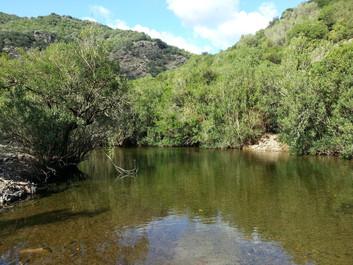 Rio Ollastu, via dell'argento
