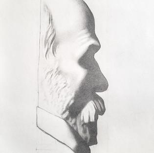 Man's profile after Bargue