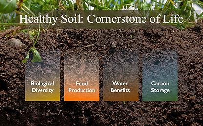 Healthy Soils.jpg