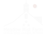 MMF - Logo 2020_white.png