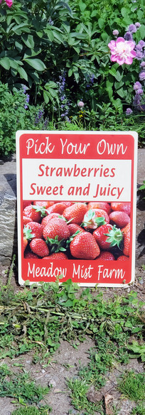 Pick Your Own Strawberries Signage