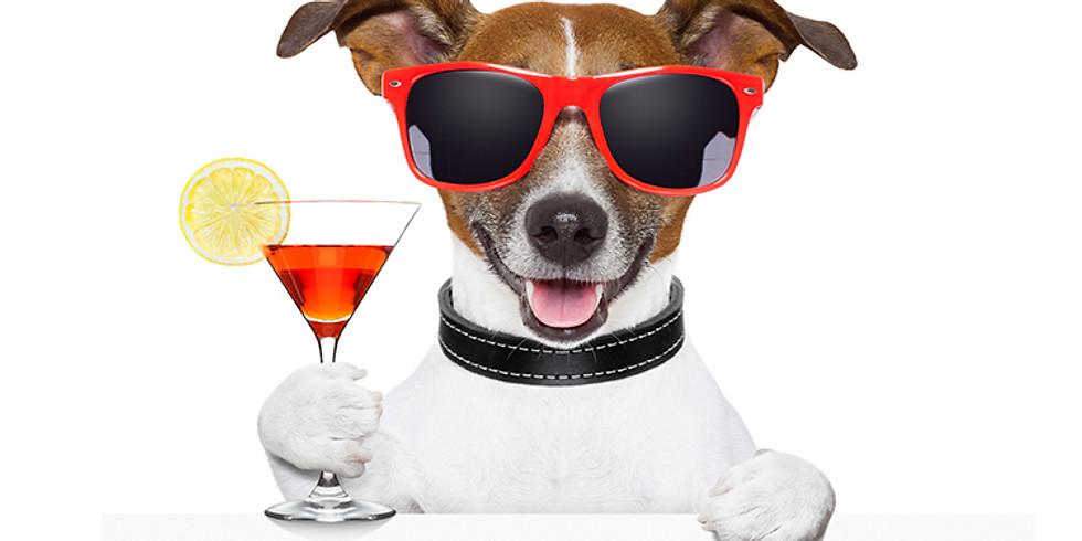 Pet Expo & Happy Hour at Serenata Beach Club