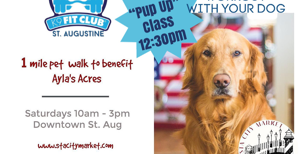"""K9 Fit Club """"Pup Up"""" Class at STA City Market"""