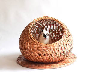 cama de gato redonda