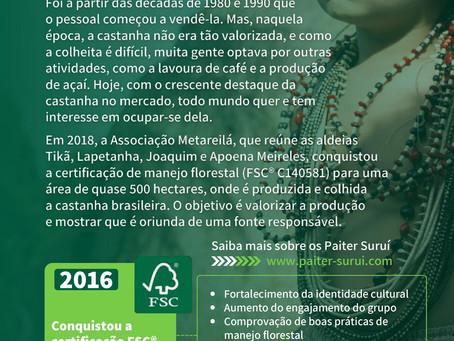 Cooperativa de produção e extrativismo sustentável da floresta indígena.