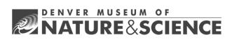 Denver Museum N&S Logo