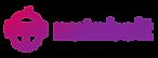 Nutnbolt Logo straightTransaparent .png