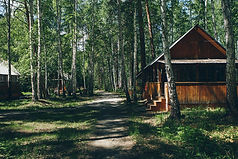 bigstock-Summer-Wooden-House-In-A-Birch-