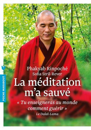 La méditation m'a sauvé: « Tu enseigneras au monde comment guérir » Le dalaï-lama
