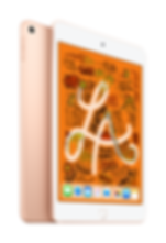 iPad mini Gold 2up.png