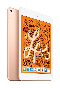 iPad mini Gold 2up.png