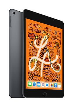 iPad mini Space Gray 2up.png