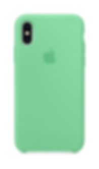 Silicone Case Spearmint.png