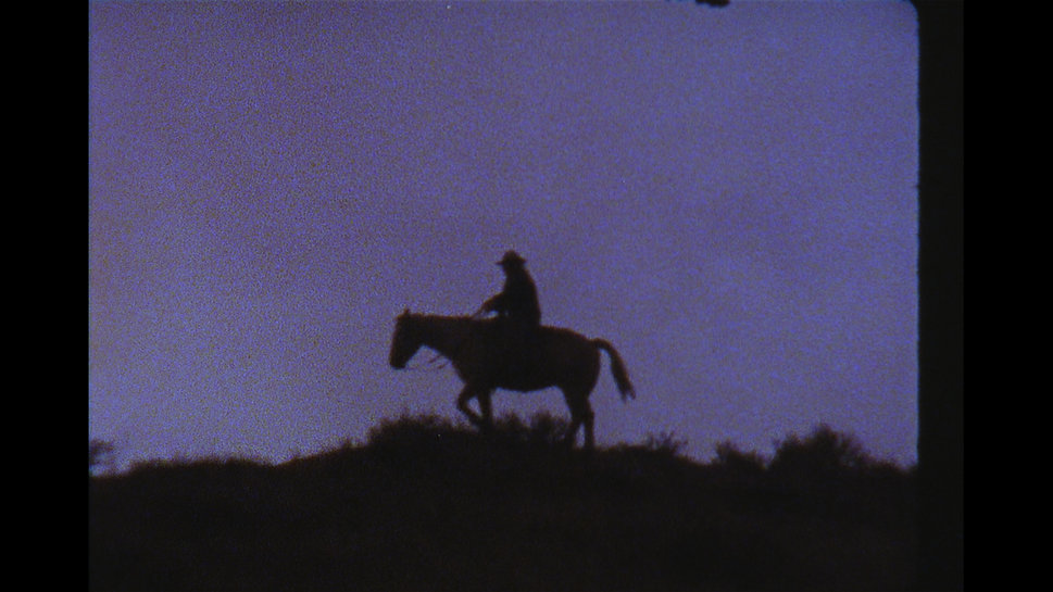 Cassandra silhouette.jpg
