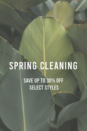 spring cleaning 1.jpg