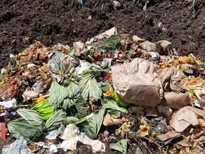 Composting in Colorado