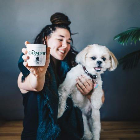 Happy Gut, Happy Pup