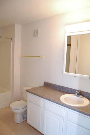 Bathroom, 1 Bedroom Unit