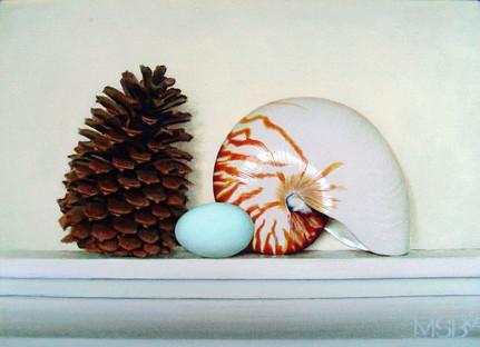 Cone, Egg & Nautilus
