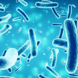 Caries dentaires : de nouvelles bactéries mises en cause dans leur développement