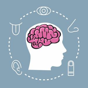 Le marketing sensoriel au service de votre patientèle