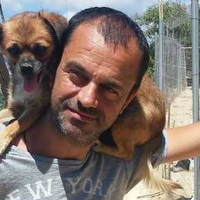 Dentiste, il quitte son métier pour créer un refuge pour les chiens et chats abandonnés