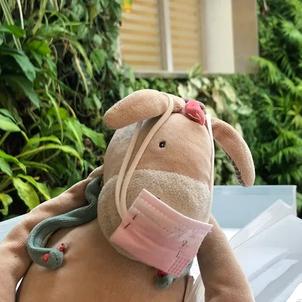 Un cabinet lance un appel pour retrouver le propriétaire d'un doudou oublié