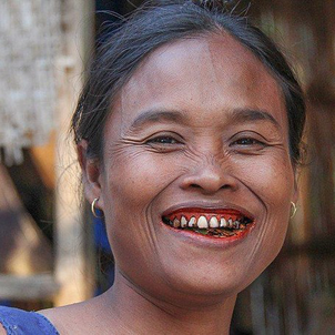 Les alternatives à la brosse à dents autour du monde