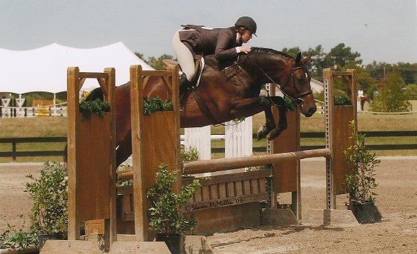 horse pic.jpg