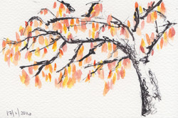 ARTWORK A DAY43