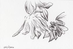 ARTWORK A DAY51