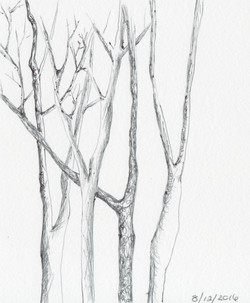 ARTWORK A DAY36