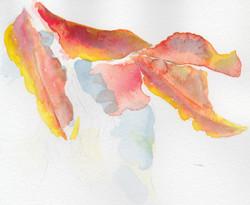 ARTWORK A DAY59